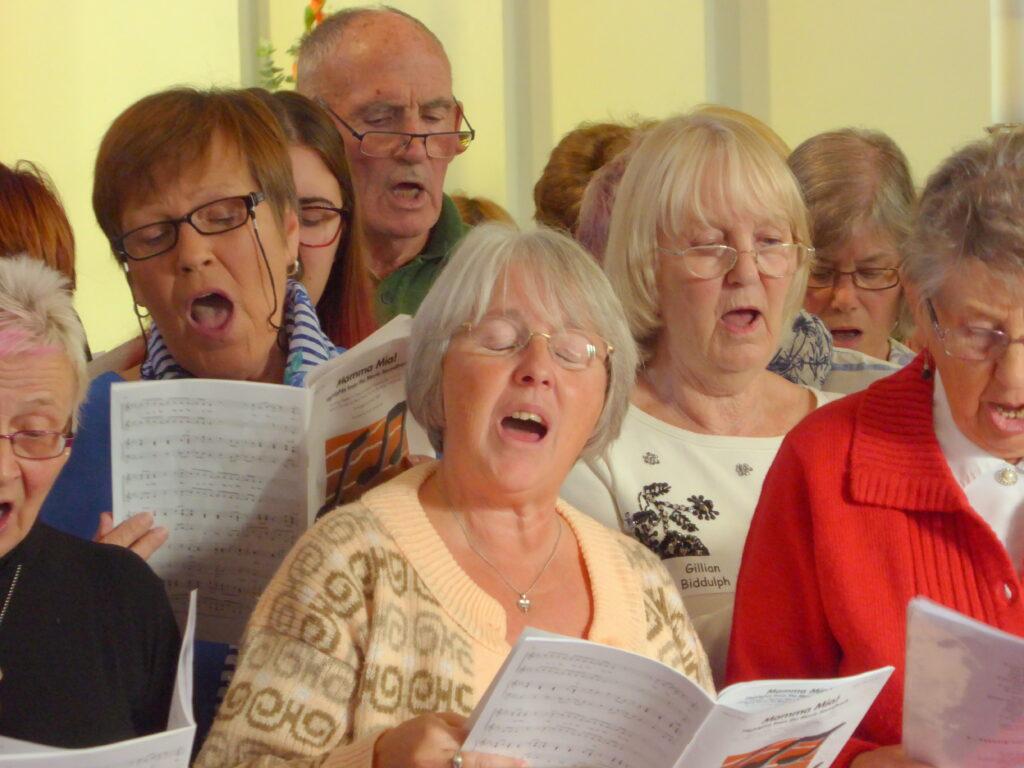 VivaVoices choir